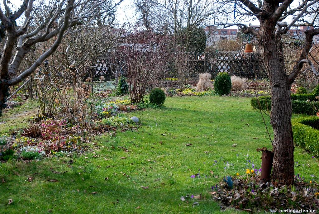 Der Garten Im Februar 12tel blick april tulpen und baumblüte berlingarten