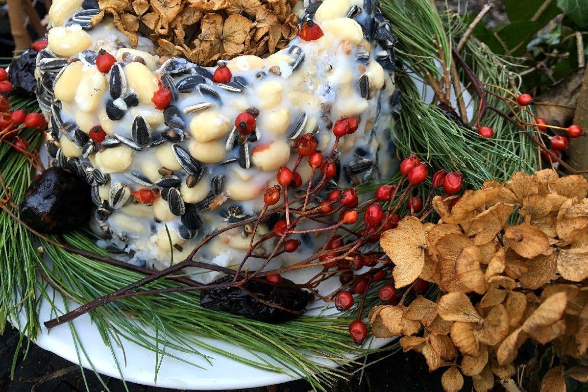 Ein hübsch dekorierter Vogelkuchen - ein Fest fürs menschliche Auge und deine Gartenvögel