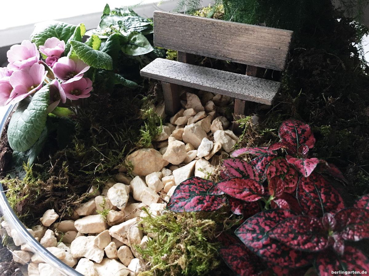 bank und beet und baum ein minigarten f r den. Black Bedroom Furniture Sets. Home Design Ideas