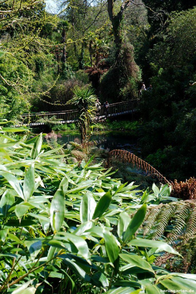 Hängebrücke Dschungel Heligan