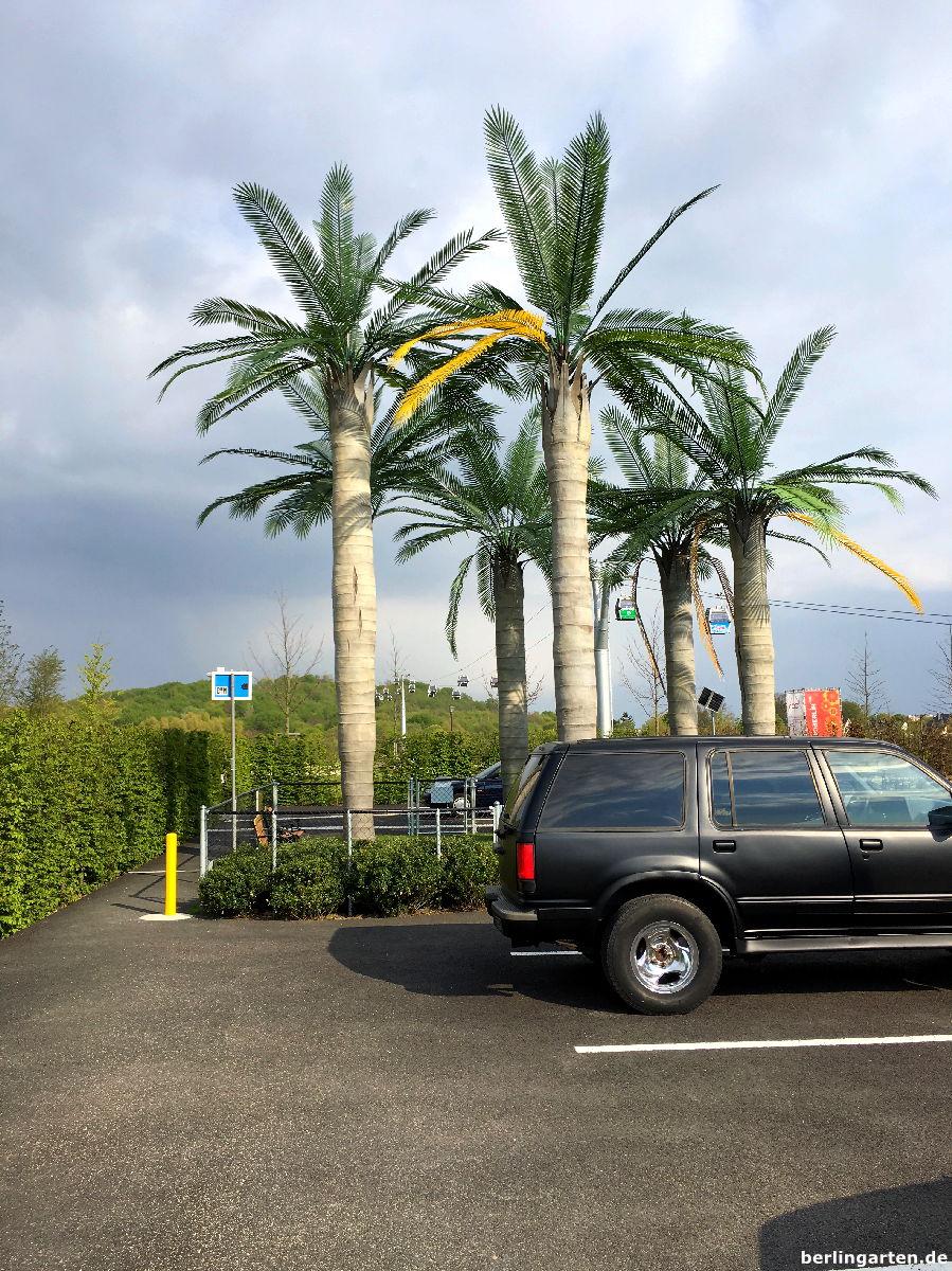 """Einer der Künstlergärten: Der Los Angeles Garden. Die kenne ich, so sehen die """"drüben"""" tatsächlich aus"""