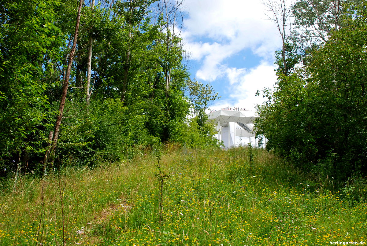 Noch viel Naturbelassenes im Wuhletal und am Kienberg