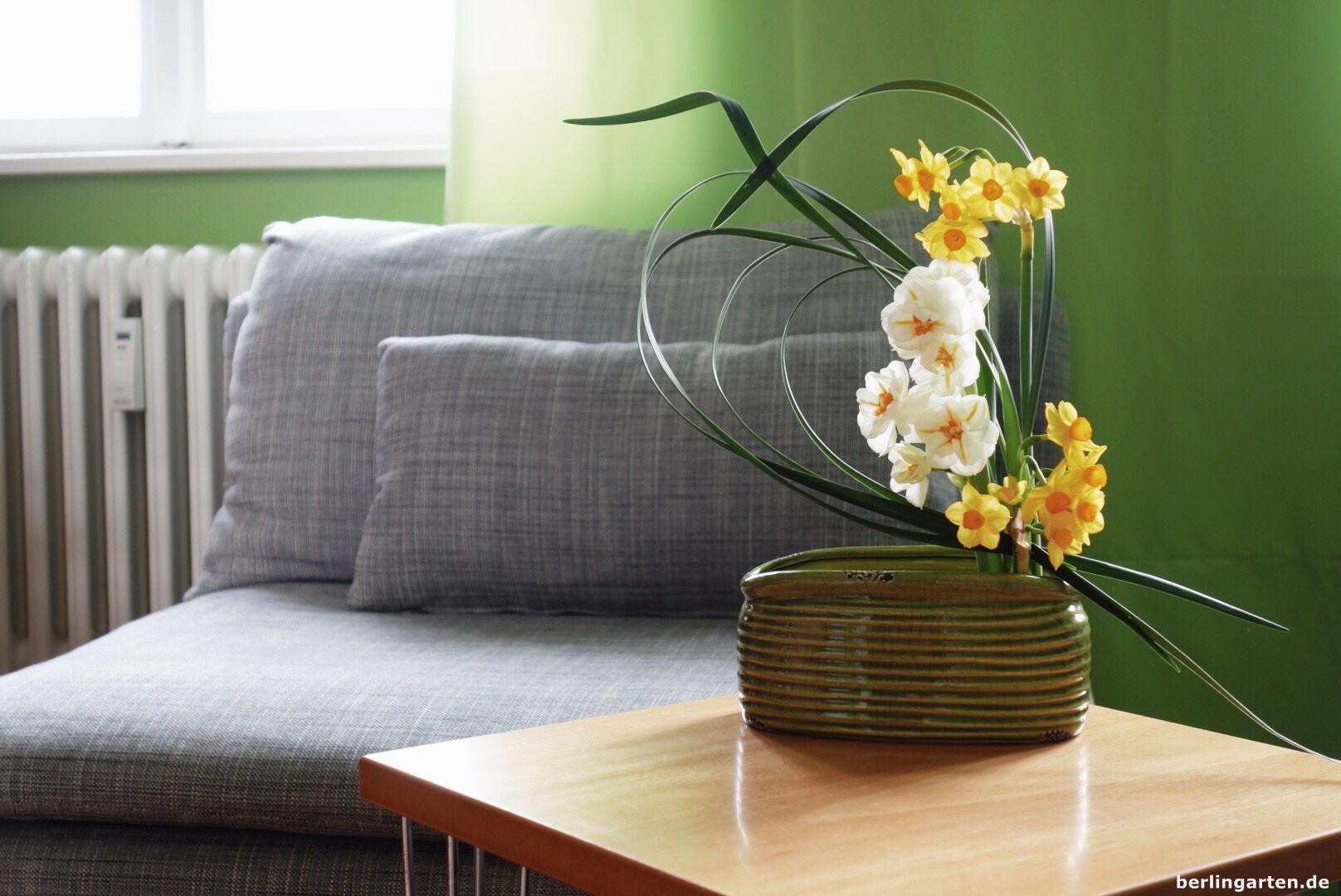 Narzissen als Ikebana gesteckt in Hagumi-Technik