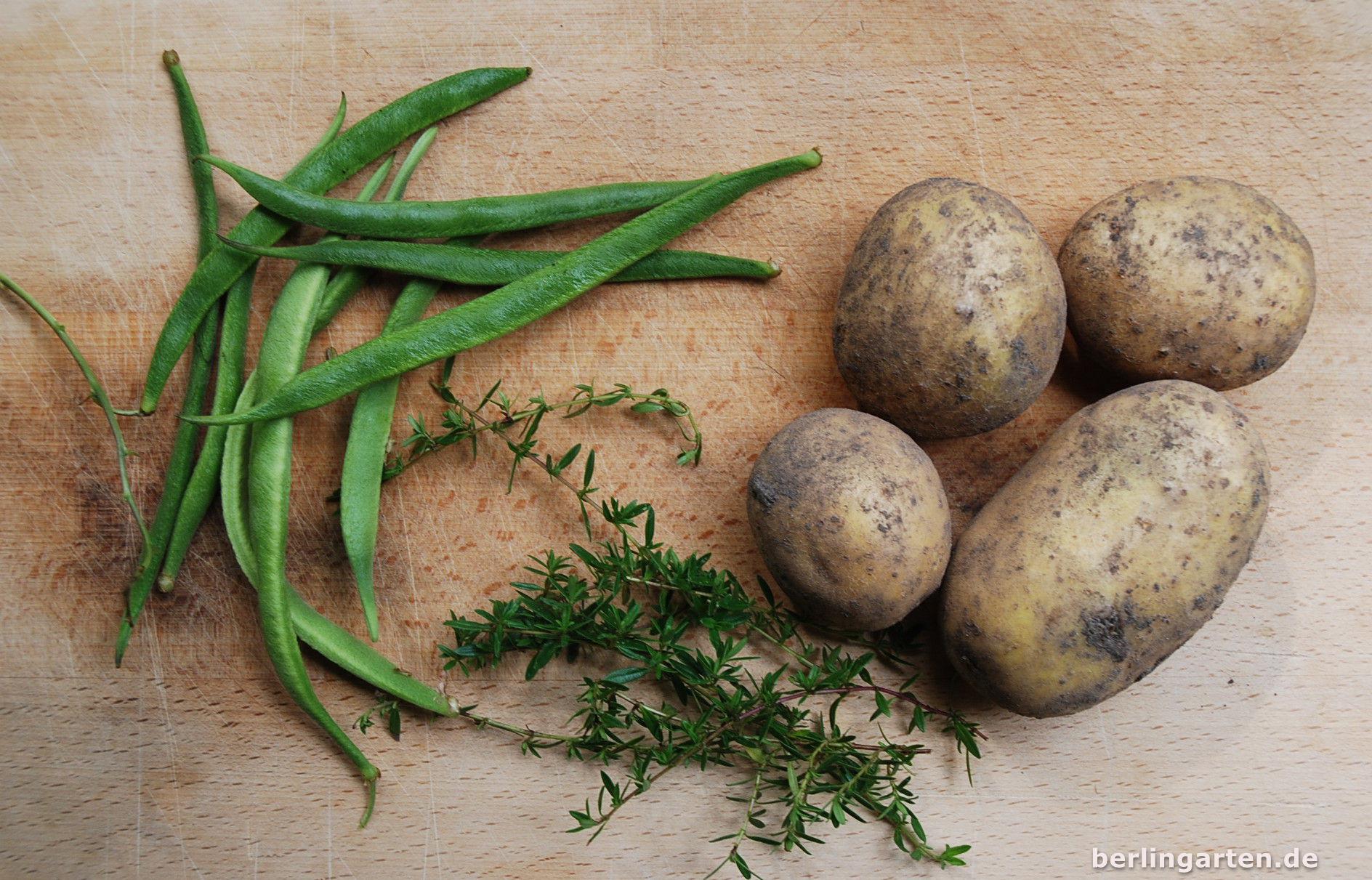 Kartoffeln-Bohnen-Salat