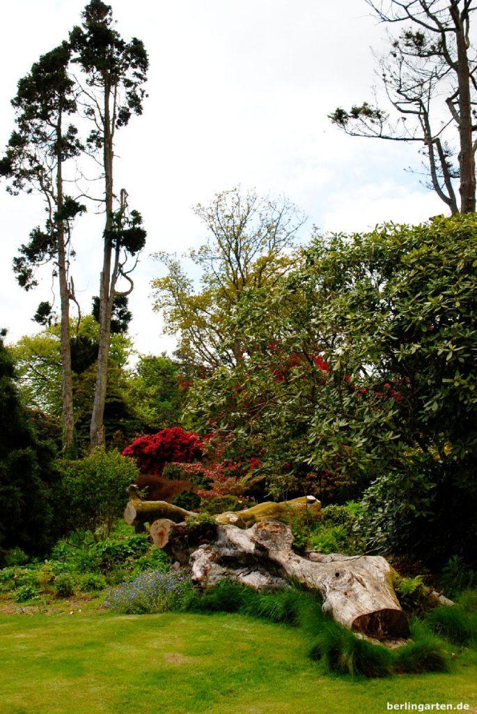 Rund um Flora's Green