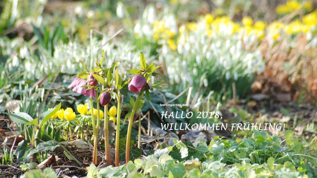 Vorfrühling, Foto zum Download