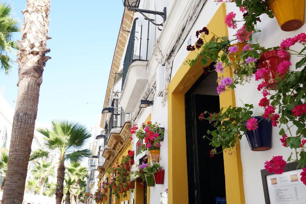 Als Sonnenkinder kommen Pelargonien sogar in kleinen Töpfen in den heißen Gassen Andalusiens zurecht