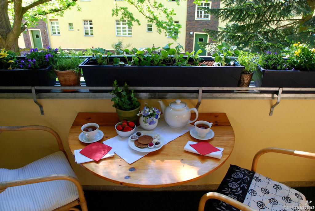 Geliebte Erdbeeren auf Balkon und Terrasse in Topf, Kasten, Kübel, Schale @FN_62