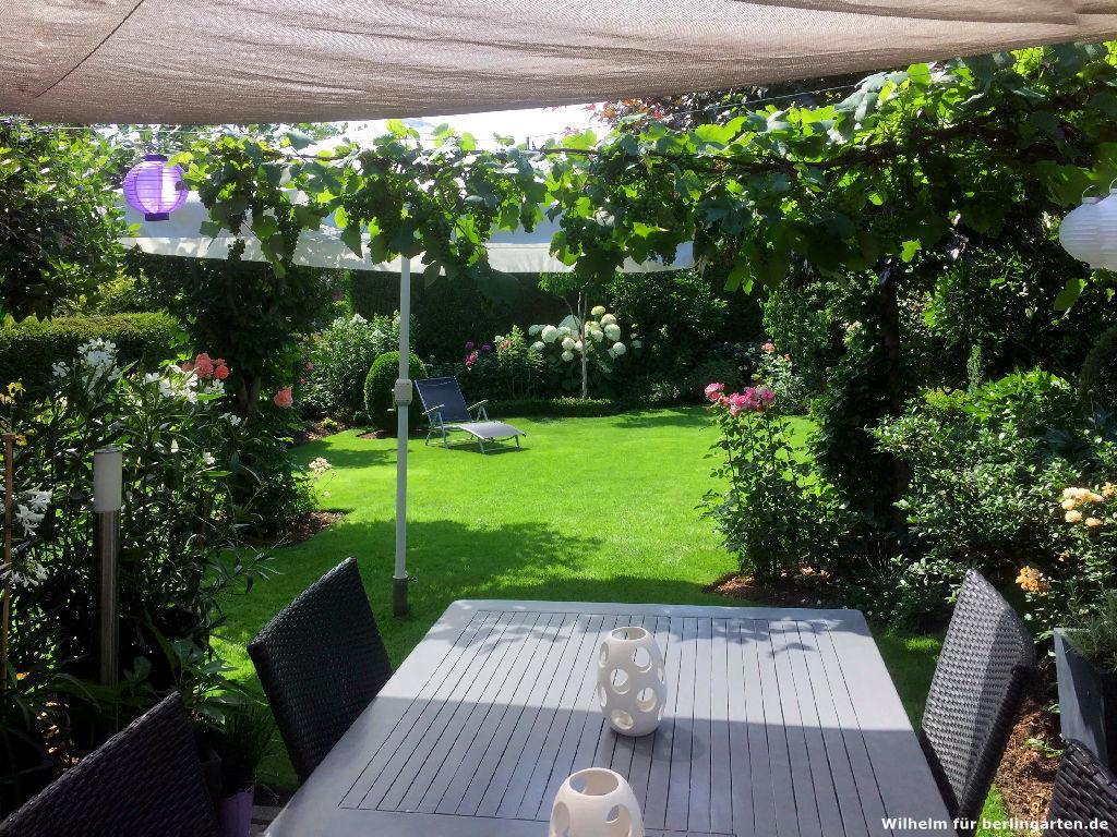 Interview: Wilhelm verrät seine Tipps zur Rasenpflege