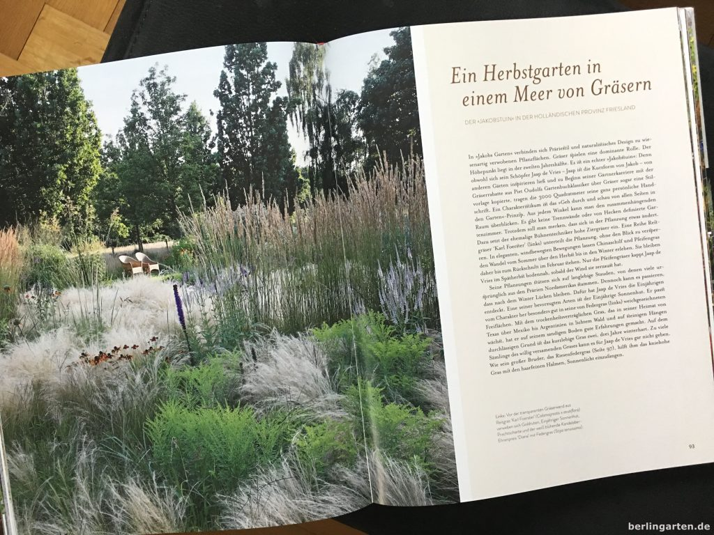 Blick in den holländischen Garten 'Jacobstuin' im Präriestil