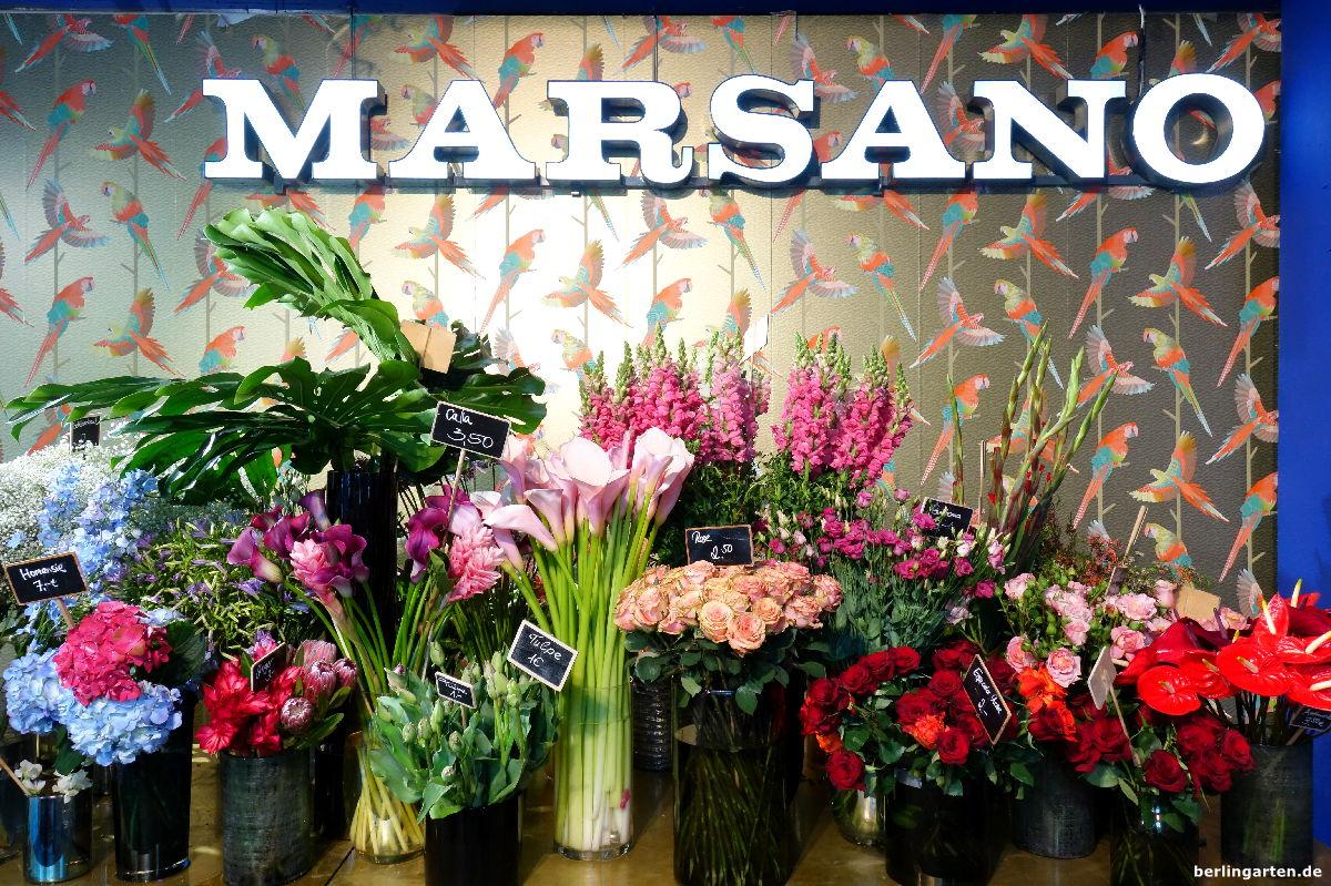 interview mit marsano floristinnen tipps f r au ergew hnliche str u e. Black Bedroom Furniture Sets. Home Design Ideas