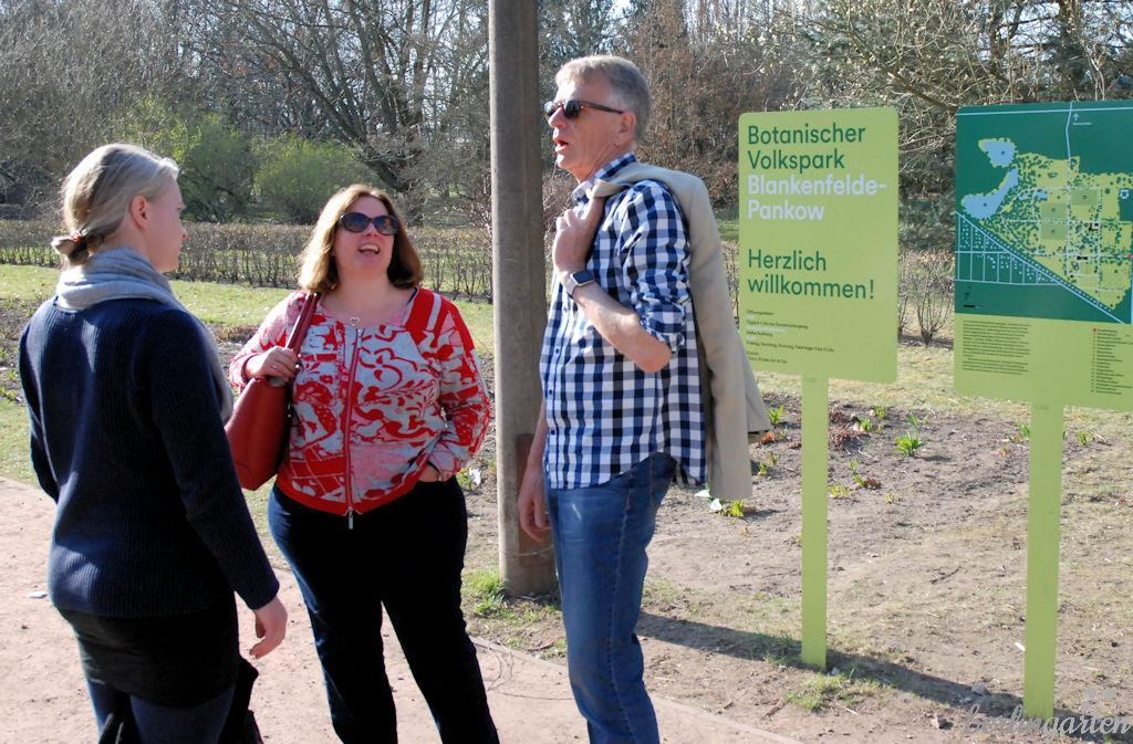 Pankow bärlauch volkspark botanischer Botanische Volkspark