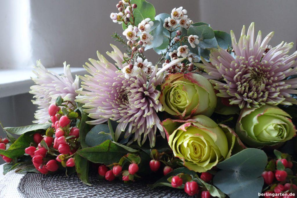 Chrysanthemen Rosen