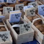 Domäne Dahlem, Kartoffelsorten