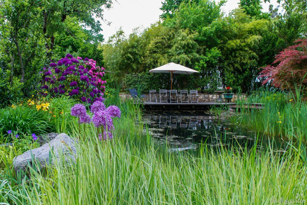 """Der Teichgarten gibt sich üppig und naturnah. Dieser Gartenbereich trägt das Prädikat """"pflegeleicht"""""""