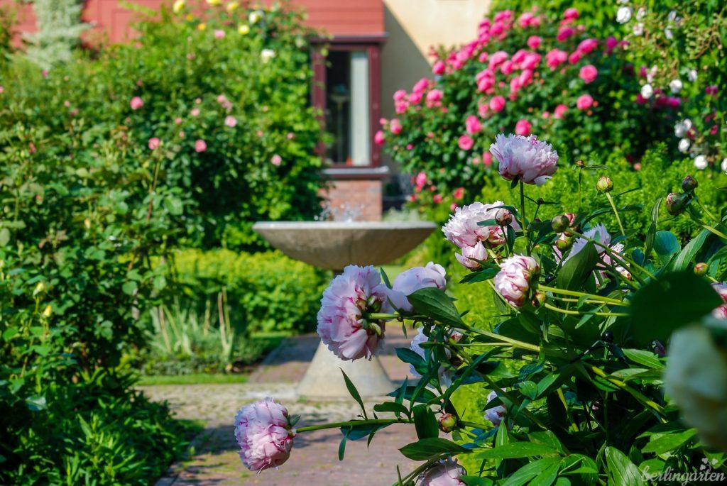 Die Sichtachse zum und vom Haus bis zum Ende des Rosengartens