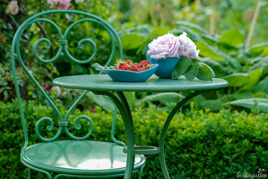 Sinnbildlich für einen Schrebergarten, in dem es alles gibt: Erdbeeren und Rosen