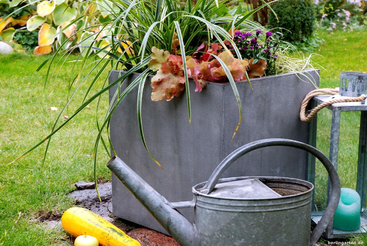 das ganze jahr schön: kübel dauerhaft bepflanzen – berlingarten
