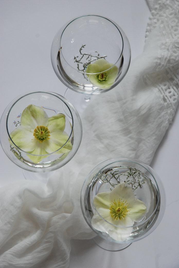 """Drei Blüten in unterschiedlichem Reifestadium. Die Blüten halten sich sehr lange als """"Seerosen"""""""
