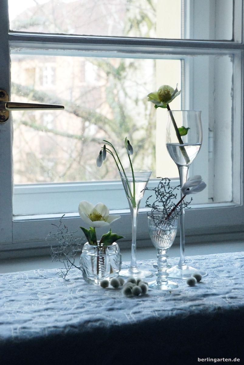 Schneeglöckchen, Chrsitrosen, Alpenveilchen