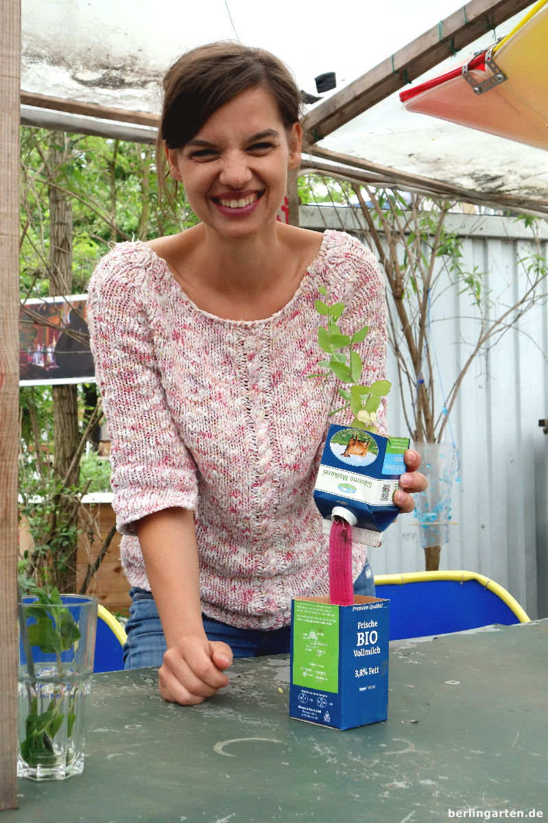 Urban Gardening Hoch3 Diy Im Prinzessinnengarten Mit Buchvorstellung
