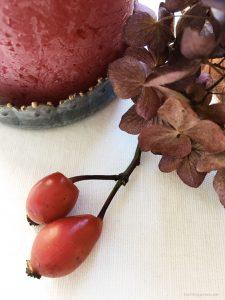 Was jetzt noch schön ist: Hortensien und Hagebutten