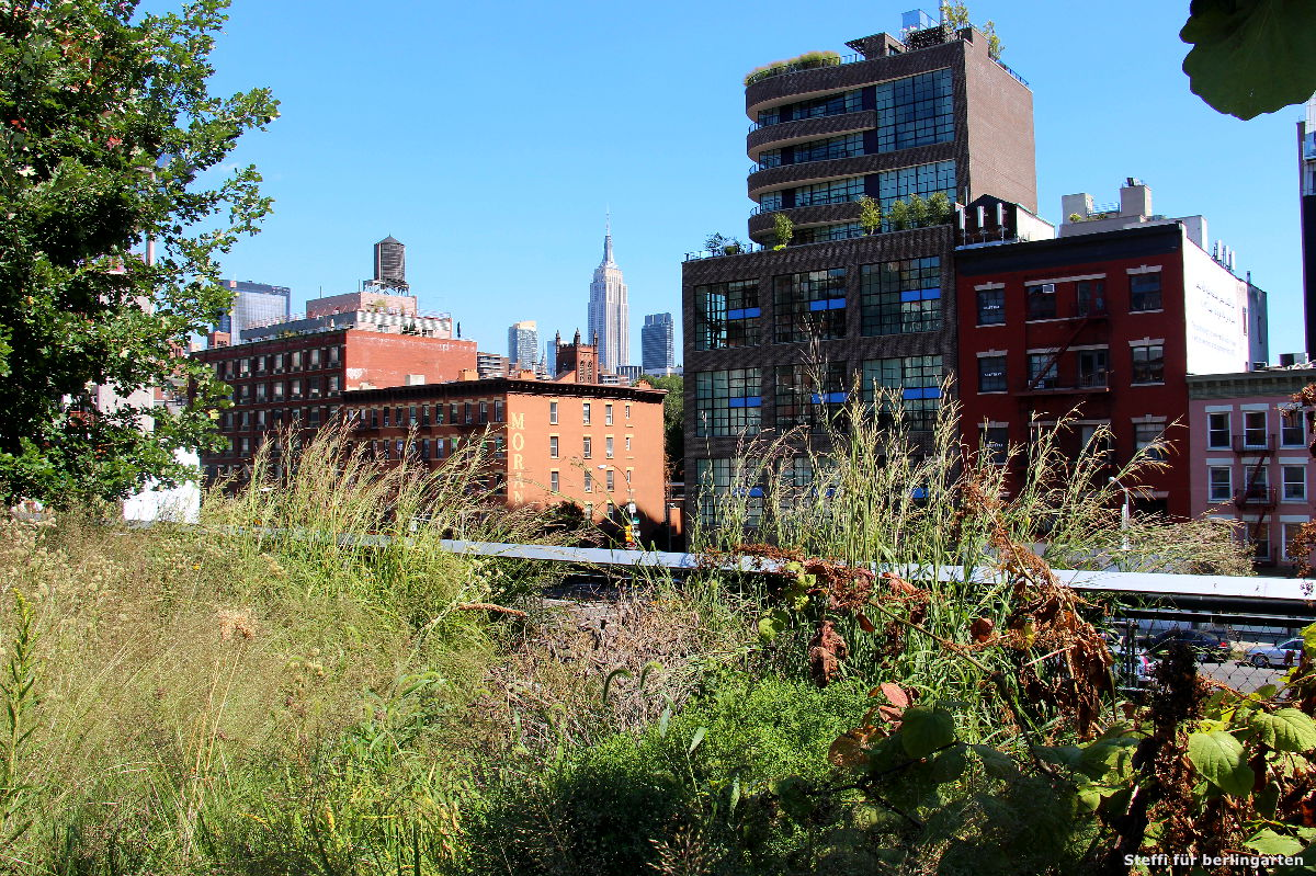 urban gardening new york ein nachmittag im highline park berlingarten. Black Bedroom Furniture Sets. Home Design Ideas