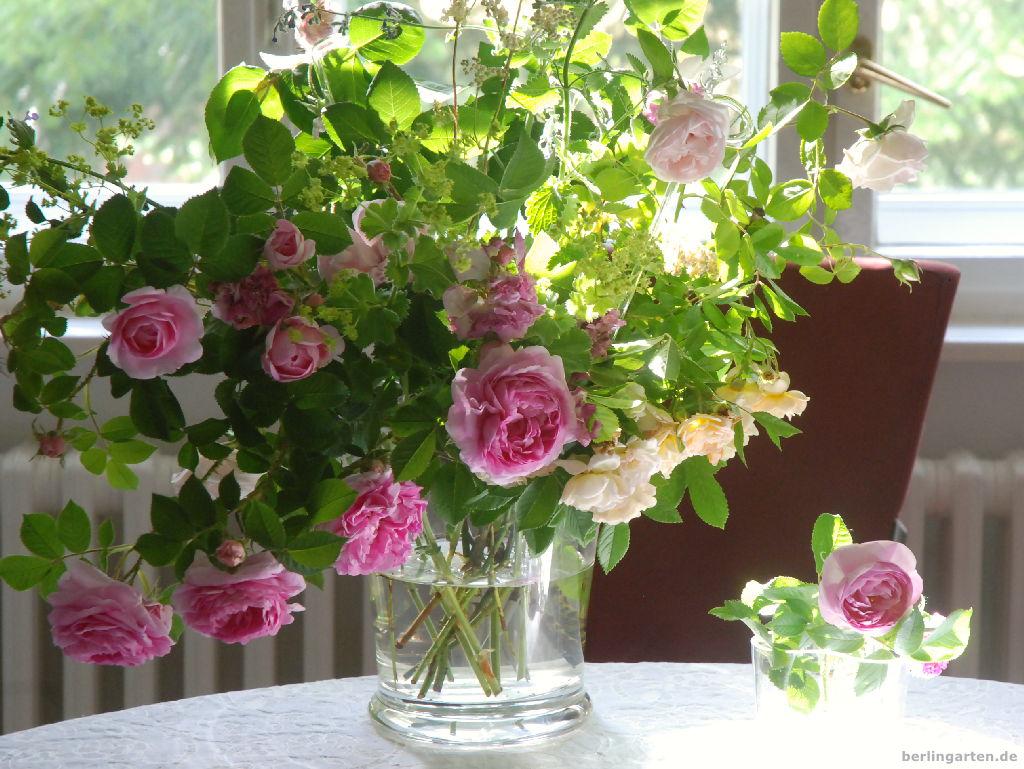 Mein wunderschöner Rosenstrauß