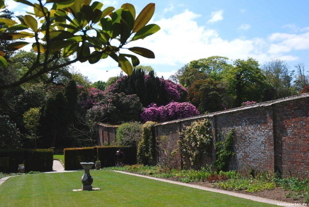 Rhodos hinter ummauertem Garten