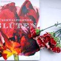 Rosie Sanders überwältigende Blüten