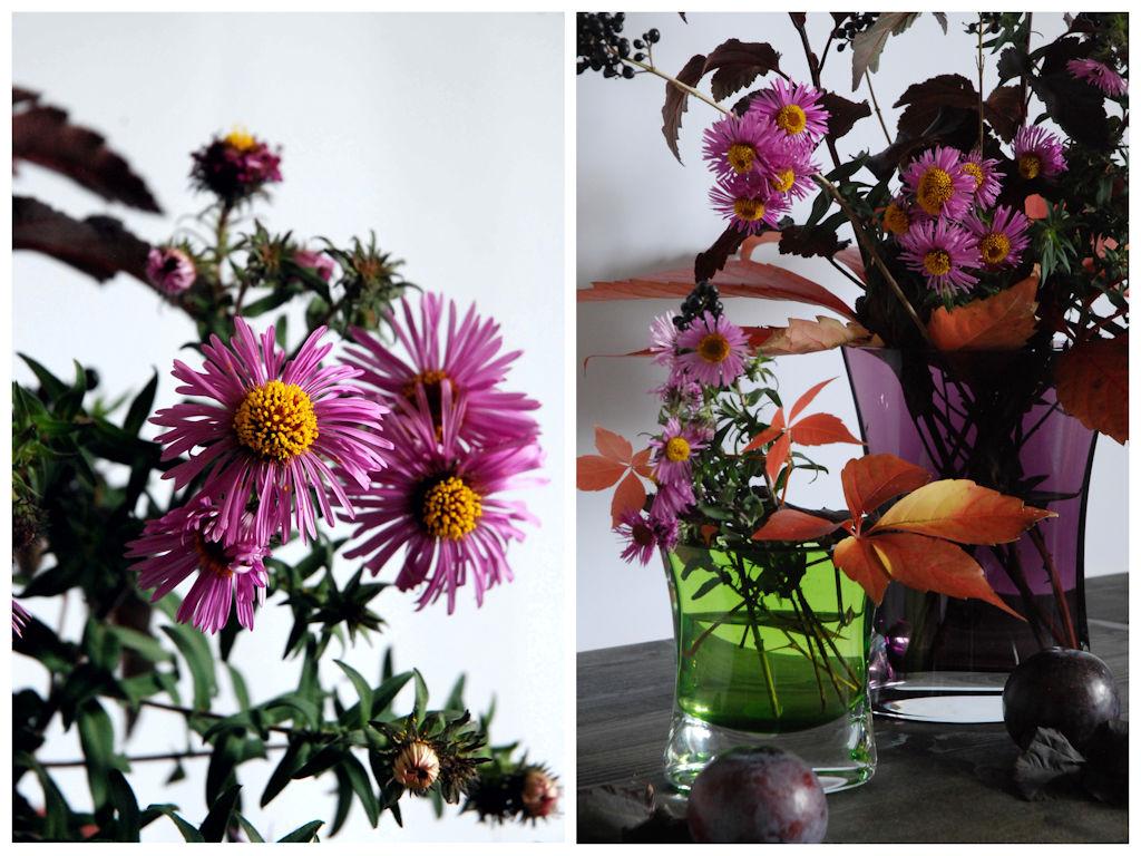 Titel 2 Vasen
