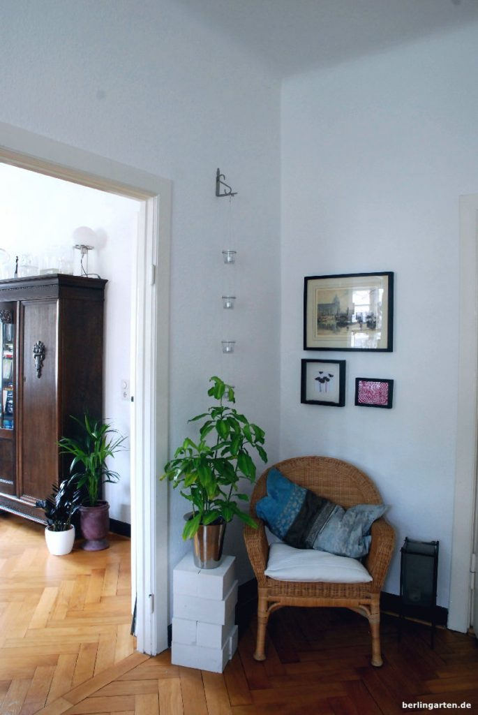 zimmerpflanzen tipps f r den schatten tolle pflanzen und. Black Bedroom Furniture Sets. Home Design Ideas