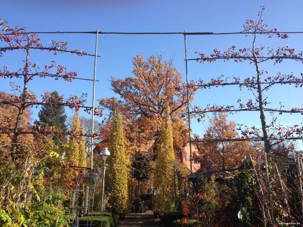Königliche Gartenakademie, vorderer Bereich