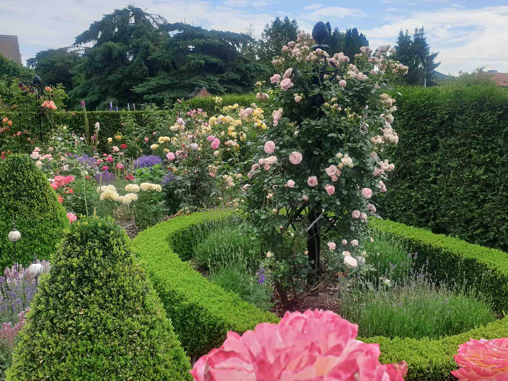 Connis formaler Garten