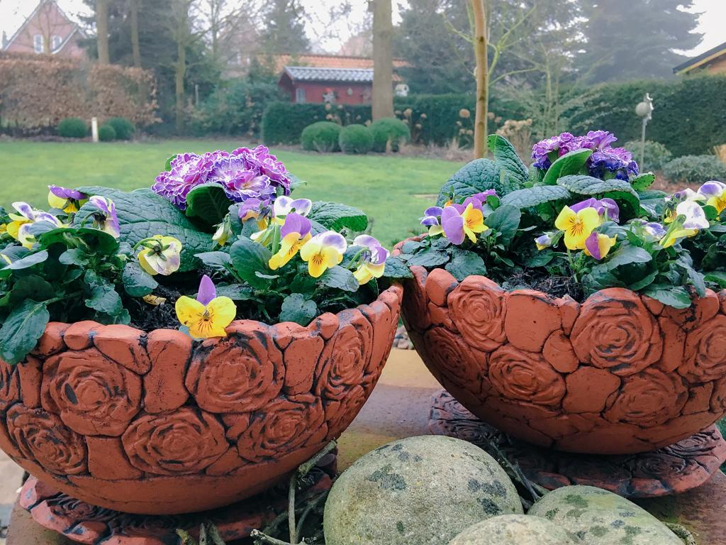 Pflanzschalen Keramik